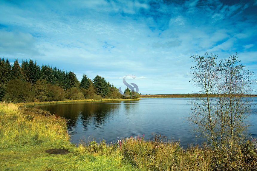 Fannyside Loch, Palacerigg Country Park, Cumbernauld, North Lanarkshire