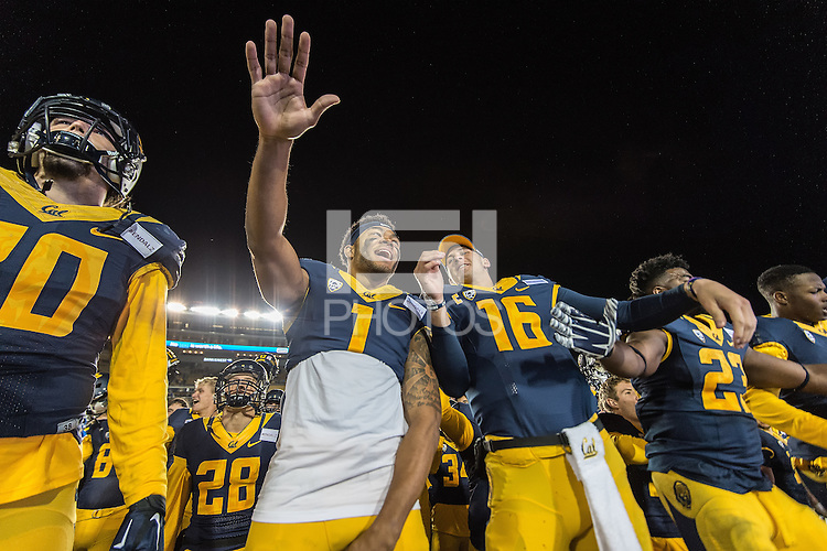 BERKELEY, CA - November 14, 2015: The Cal Bears Football team vs the Oregon State Beavers at California Memorial Stadium in Berkeley, CA.  Final score, Cal Bears 54, Oregon State Beavers 24.
