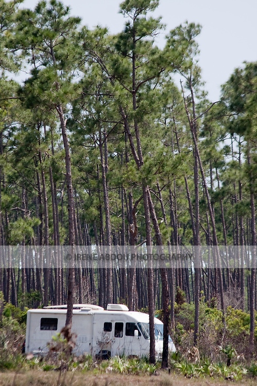 "A camper rests amidst a forest of long pine trees at ""Long Pine Key.""  Long Pine Key lies near the eastern edge of the Everglades National Park and is accessed through the Ernest F. Coe Visitor Center."