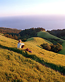 USA, California, Marin, woman sitting on a grassy hillside in the Marin Headlands looking towards the Pacific