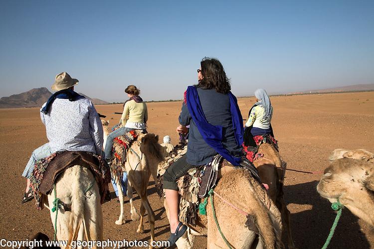 Tourists camel trekking in the Sahara desert, near Zagora, Morocco, north Africa
