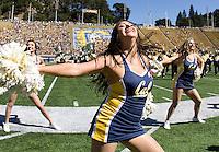 California cheerleaders perform before the game between California and Washington State at Memorial Stadium in Berkeley, California on October 5th, 2013.  Washington State defeated California, 44-22.