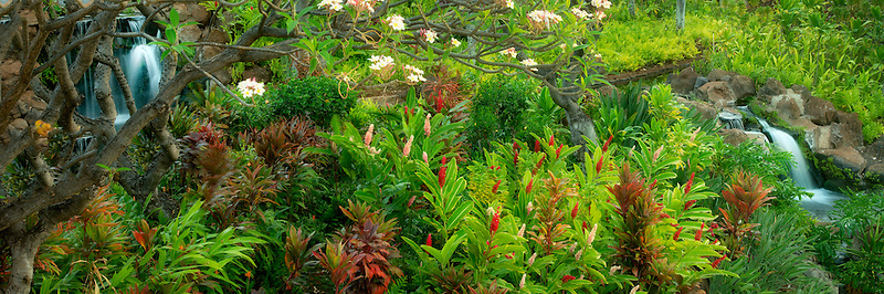 Gardens at Four Seasons. Lanai, Hawaii.
