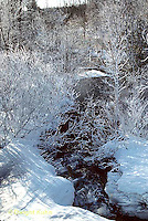 1I01-004c  Ice covered trees along small stream, winter time