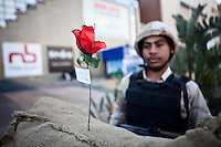 "EGYPT, Cairo, A rose accompanied by a small paper where it is marked ""Constitution"" is planted in front of a checkpoint of the Egyptian army in Cairo during the referendum on the Constitution January 15, 2014 .. NGUYEN HOANG VIRGINIE"