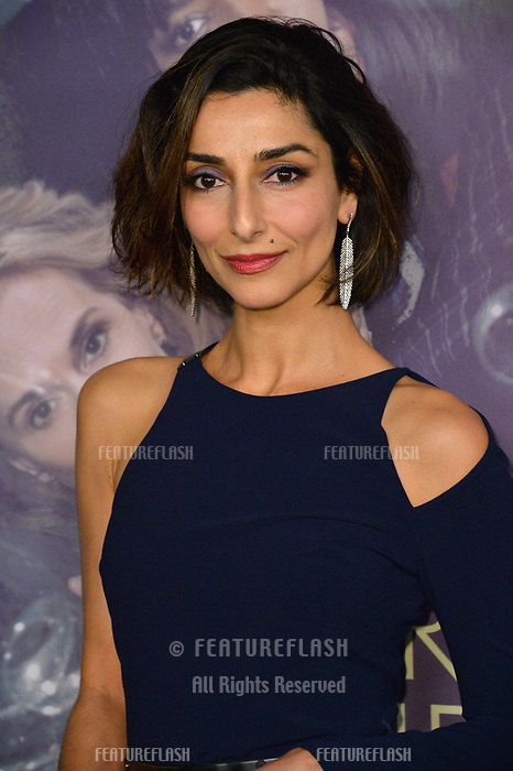 Necar Zadegan at the premiere for HBO's &quot;Here and Now&quot; at The Directors Guild of America, Los Angeles, USA 05 Feb. 2018<br /> Picture: Paul Smith/Featureflash/SilverHub 0208 004 5359 sales@silverhubmedia.com