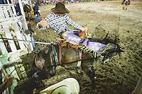 Byron Bay Rodeo. 12/1/2015<br /> Photo Credit - James Horan
