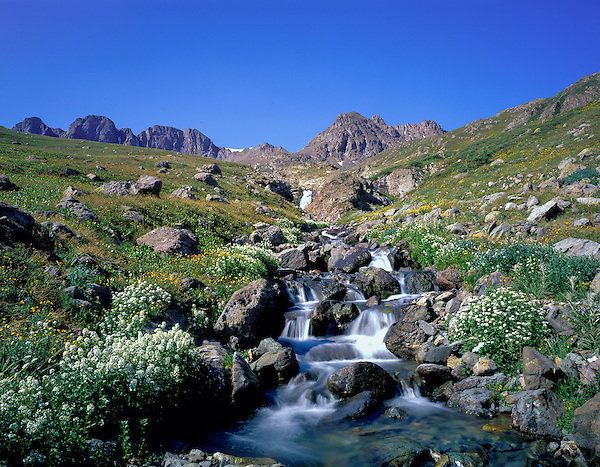 Waterfall in American Basin, San Juan Mounatins, Colorado, .  John leads wildflower photo tours into American Basin and throughout Colorado. All-year long.