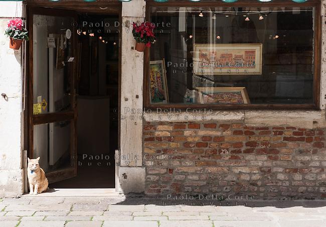 Venezia - Ghetto. La Galleria d' arte di Michal Mafron. Venice Ghetto The Michal Mafron Art's Gallery
