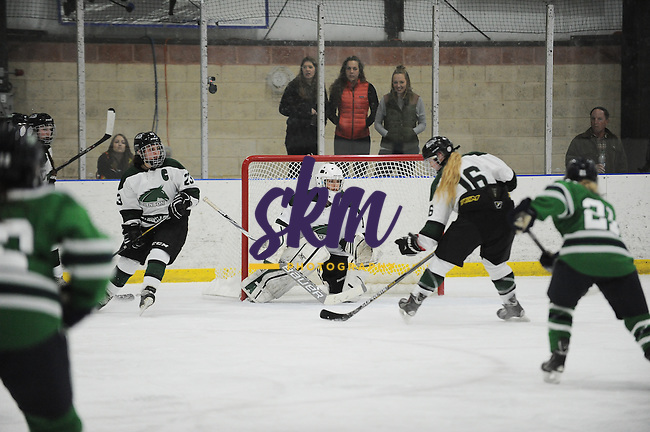Stevenson women's ice hosted Endicott in their first home game of the season, falling 4-0 to the Gulls.