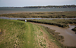Man walking on flood defence barrier wall of River Stour at Brantham, Suffolk, England