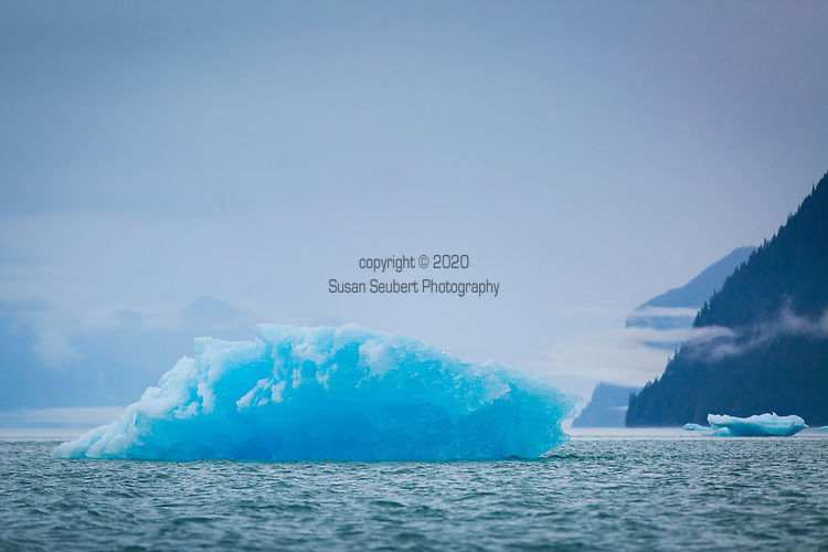 Icebergs near the entrance to LeConte Glacier, the southern most tidewater glacier in the northern hemisphere