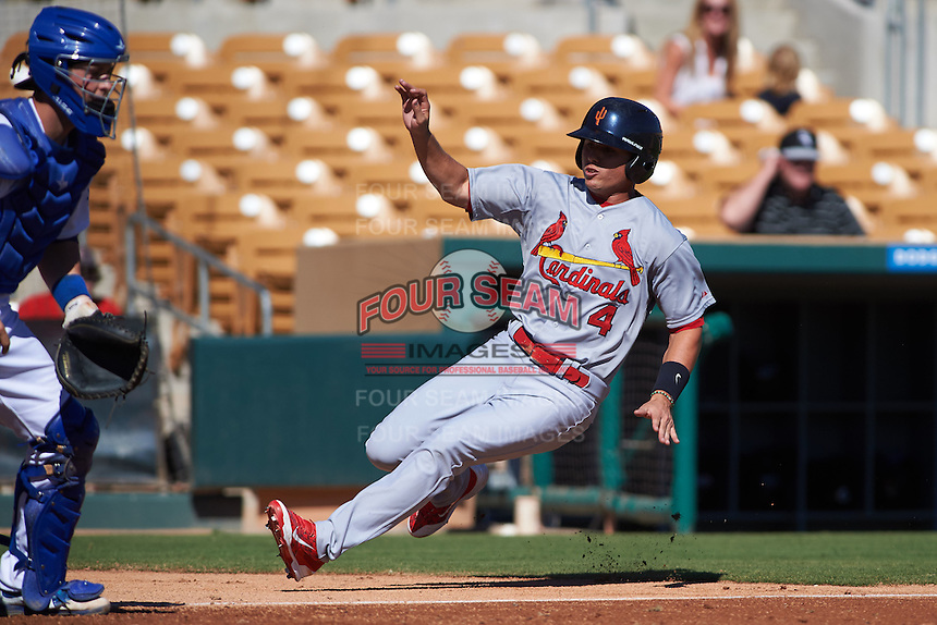 Surprise Saguaros shortstop Aledmys Diaz (4) slides into home during an Arizona Fall League game against the Glendale Desert Dogs on October 24, 2015 at Camelback Ranch in Glendale, Arizona.  Surprise defeated Glendale 18-3.  (Mike Janes/Four Seam Images)