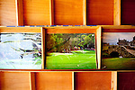 Photographs of The Augusta National Golf Course, along with other courses, by photographer Phil Reich for sale on Washington Road in Augusta, Georgia April 15, 2010.