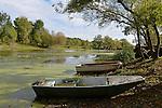 Le vieux Louet à Juigné sur Loire (49).