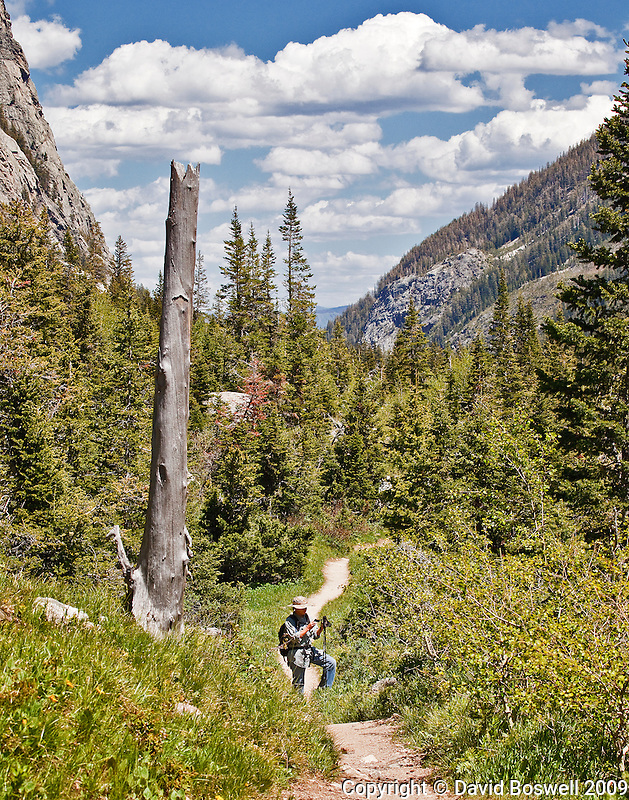 Kyler hiking in Cascade Canyon in Grand Teton National Park on a beautiful summer day.
