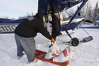 February 16, 2013  Volunteer Larry Cheeso helps Iditarod Air Force pilot Bill Mayer  load his Cessna at the Willow airport as musher food, straw, HEET and people food is flown to the 4 checkpoints on the east side the Alaska Range. ..Iditarod 2013 Photo Copyright Jeff Schultz  -- Do not reproduce without written permission