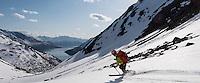 Mann kjører telemark på vei ned fra Fjelltindnasen. ---- Man decending from Fjelltindnasen.