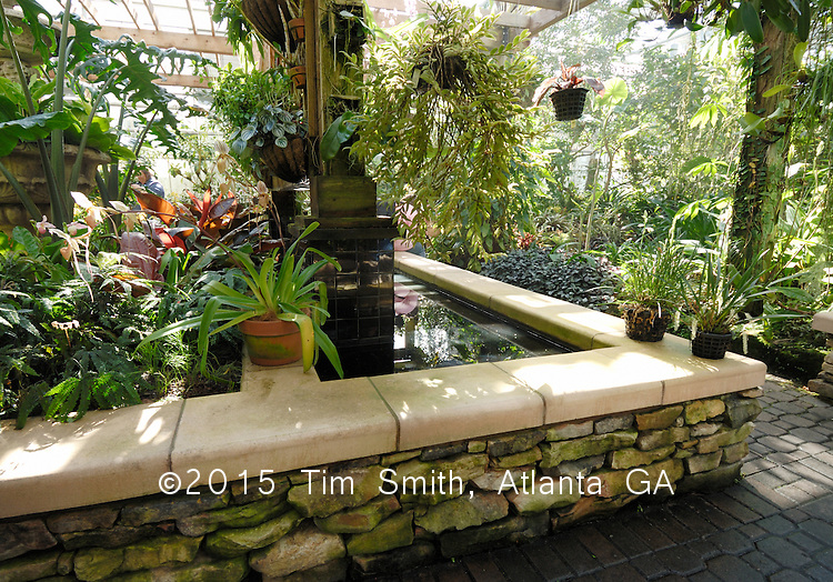 The Fuqua Orchid Center at the Atlanta Botanical Garden.  A pleasant place to stroll or sit, the tropics are maintained year round in temperate Atlanta! PSC