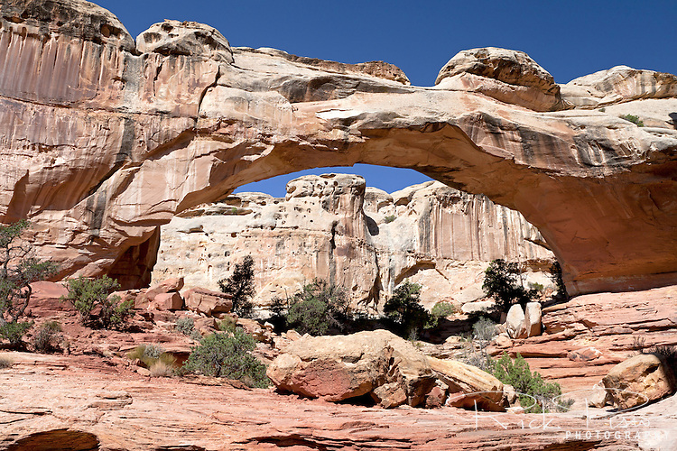 Hickman Bridge, a natural arch, is located in Utah's Capital Reef National Park.