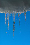 Close up of icicles hanging against blue sky, ice, spikes, drop,.Japan....