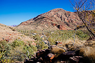 Image Ref: CA518<br />