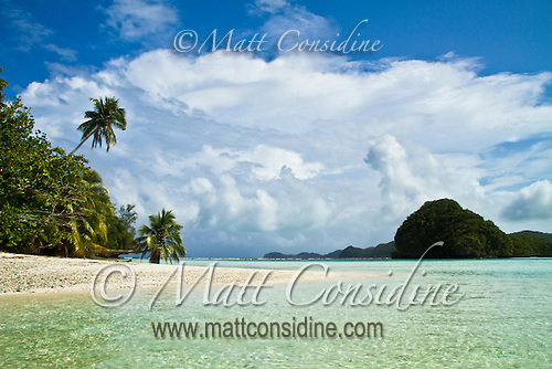 Tropical beach scene with palm trees, Palau Micronesia. (Photo by Matt Considine - Images of Asia Collection) (Matt Considine)