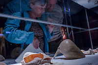 Human Body exhibition uses original human bodies conserved with a special silicon technology to present visitors the setup and function of the body in Budapest, Hungary on March 26, 2012. ATTILA VOLGYI