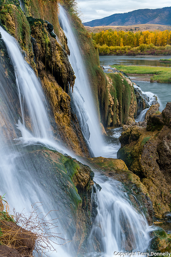 Caribou National Forest, Idaho:<br /> Fall Creek Falls flows into the Snake River, Swan Valley