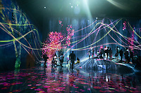 """""""The Borderless World"""" in Team Lab's Borderless digital museum in Tokyo, Japan, July, 2019. The digital museum is one of Tokyo's most popular attractions and uses innovative digital audio-visual displays."""