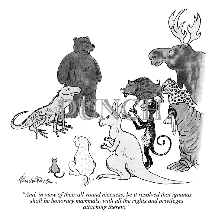"""""""And, in view of their all-round niceness, be it resolved that iguanas shall be honorary mammals, with all the rights and privileges attaching thereto."""""""