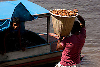 """ProduÁ""""o de andiroba.<br /> Moj˙ Miri, Moj˙, Par·, Brasil.22/06/2011<br /> Foto Paiulo Santos"""