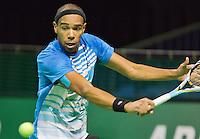 09-02-13, Tennis, Rotterdam, qualification ABNAMROWTT, Ouanna