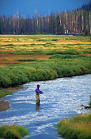 Fly fisherman along the Gardiner River in Yellowstone National Park