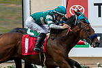 DEL MAR, CA  SEPTEMBER 1: #1 Encoder, ridden by Flavien Prat, holds on to win by a head over #5 Billy Batts, ridden by Drayden Van Dyke, in the Del Mar Juvenile Turf on September 1, 2019 at Del Mar Thoroughbred Club in Del Mar, CA. ( Photo by Casey Phillips/Eclipse Sportswire/CSM)