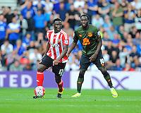 Southampton vs Everton 15-08-15