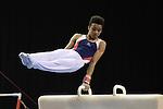 British Gymnastics Championships. Mens u14 - u16 .2015Liverpool Echo Arena.