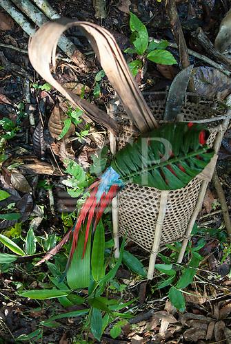 Aldeia Baú, Para State, Brazil. A macaw in a palm leaf bundle with a Kayapo basket and a machete knife.