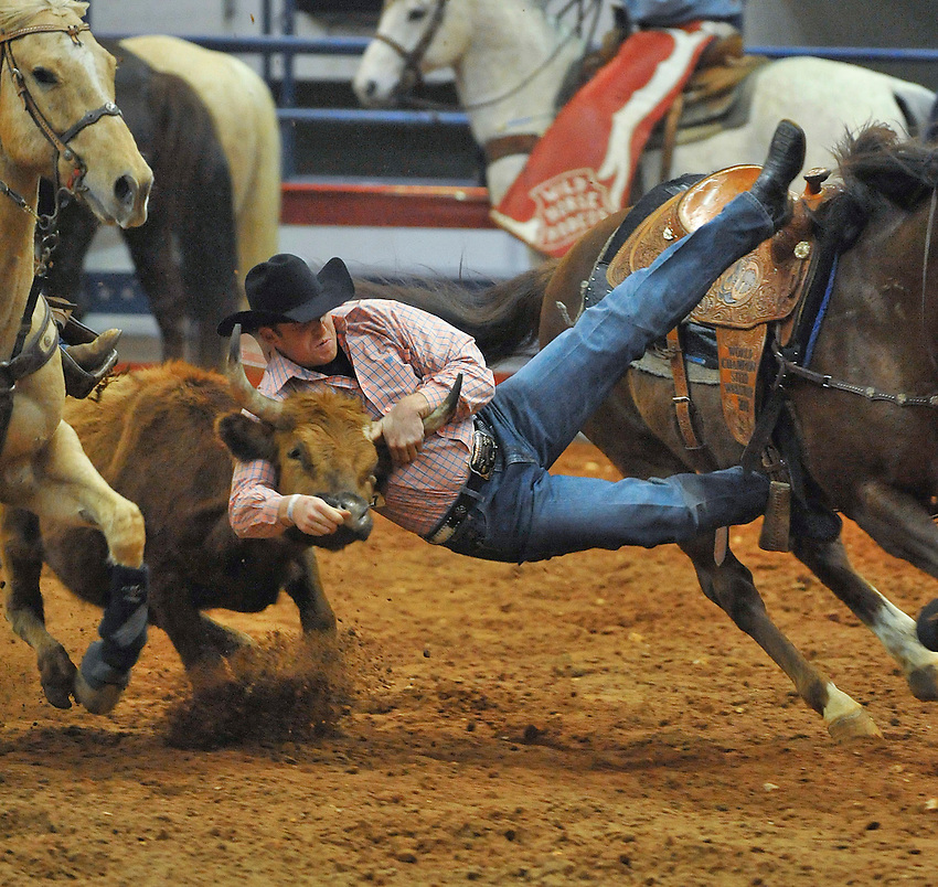 Joe Cook from Barnwell, SC in the steer wrestling.  Longhorn Championship Rodeo at Von Braun Center arena Friday evening.    Bob Gathany / The Huntsville Times