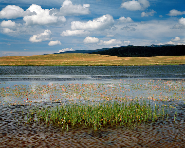 Cloud formations over Crescent Lake in the White Mountains; Apache-Sitgreaves National Forest, AZ