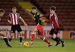 Crewe's Harry Pickering and Sheffield United's George Cantrill in action during the FA Youth Cup First Round match at Bramall Lane Stadium, Sheffield. Picture date: November 1st 2016. Pic Richard Sellers/Sportimage