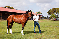 DEL RAY BEACH, FL - APRIL 15: 2017  Kentucky Derby contender Patch with trainer Todd Pletcher at Palm Beach Downs, Del Ray Beach, FL. (Photo by Arron Haggart/Eclipse Sportswire/Getty Images)