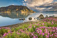 Kluane lake and sheep mountain area in Kluane National Park, Yukon Territory, Canada, along the Alaska Canada Highway.
