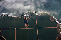 aerial photograph farming coastal Santa Cruz county, California