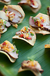 Party for the Biennial of the Americas.  Pork Tenderloin on a yucca chip topped with grilled pineapple salsa, on a banana leaf.  May 20, 2010. Photos by Ellen Jaskol