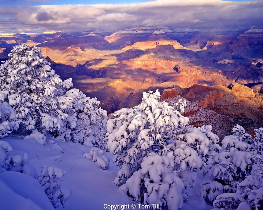 Heavy snow at Yaki Point, South Rim, Colorado River below, Grand Canyon National Park, Arizona