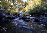 The sun sets behind fall colors on the East Fork of the Carson River on Tuesday, Oct. 12, 2010..Photo by Cathleen Allison