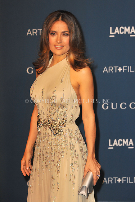 WWW.ACEPIXS.COM<br /> <br /> November 2 2013, New York City<br /> <br /> Salma Hayek arriving at the LACMA 2013 Art + Film Gala honoring Martin Scorsese and David Hockney at LACMA on November 2, 2013 in Los Angeles, California.<br /> <br /> <br /> By Line: Peter West/ACE Pictures<br /> <br /> <br /> ACE Pictures, Inc.<br /> tel: 646 769 0430<br /> Email: info@acepixs.com<br /> www.acepixs.com