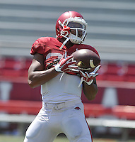 NWA Democrat-Gazette/MICHAEL WOODS &bull; @NWAMICHAELW<br /> University of Arkansas running back Jonathan Williams runs drills during practice Saturday, August 15, 2015 at Razorback Stadium in Fayetteville.