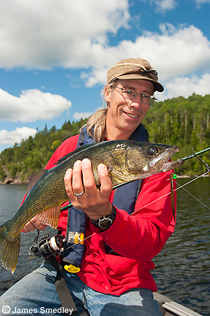 Angler holding a large summer walleye.